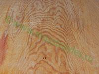 Образец поверхности хвойной фанеры марки ФСФ, сорта3/3